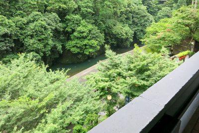 和室10畳 窓からの景色